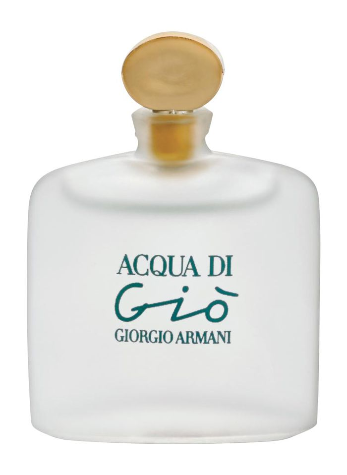 giorgio armani acqua di gio eau de toilette boutique catalog shopping for